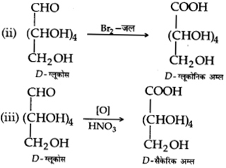 UP Board Solutions for Class 12 Chemistry Chapter 14 Biomolecules 9