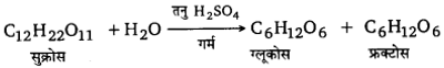 UP Board Solutions for Class 12 Chemistry Chapter 14 Biomolecules 17