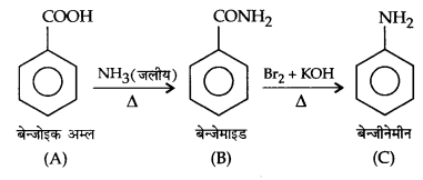 UP Board Solutions for Class 12 Chemistry Chapter 14 Biomolecules 22