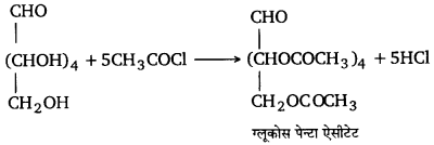 UP Board Solutions for Class 12 Chemistry Chapter 14 Biomolecules 25