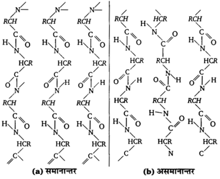 UP Board Solutions for Class 12 Chemistry Chapter 14 Biomolecules 35