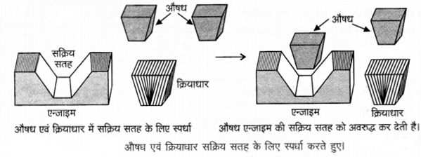 UP Board Solutions for Class 12 Chemistry Chapter 16 Chemistry in Everyday Life 17