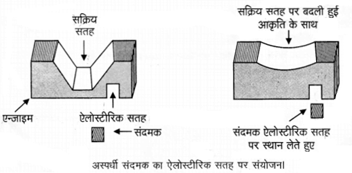 UP Board Solutions for Class 12 Chemistry Chapter 16 Chemistry in Everyday Life 18