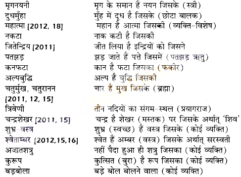 UP Board Solutions for Class 10 Hindi समास img-13