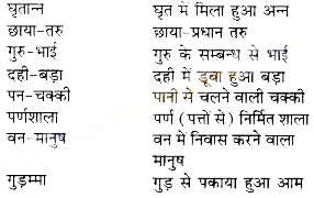 UP Board Solutions for Class 10 Hindi समास img-6