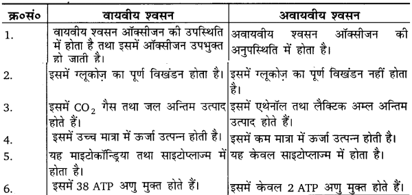 UP Board Solutions for Class 10 Science Chapter 6 Life Processes img-4