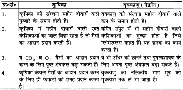UP Board Solutions for Class 10 Science Chapter 6 Life Processes img-6